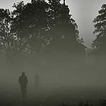 Ludzie we mgle