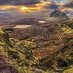 - Szkocja