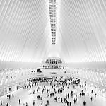 Oculus - NYC