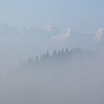Za mgłą
