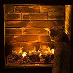 id� d�ugie, zimowe wieczory...