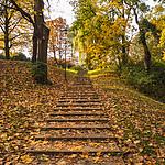 Schody w parku