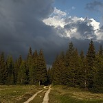 Storm in Jizera Mountains